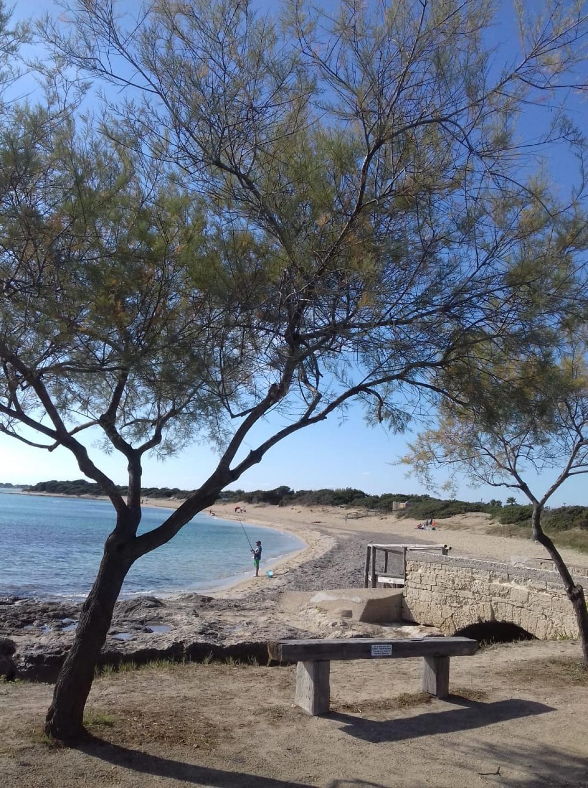 spiaggia vicino casa